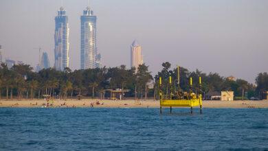 صورة تعرف على نتيجة التحقيق الإماراتي في قضية وفاة الرجل الطائر