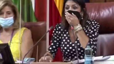 صورة شاهد: فأر يرعب النواب في برلمان إسبانيا