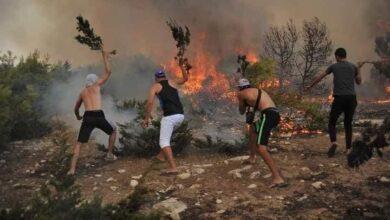 صورة شاهد: عقب الجزائر.. الحرائق تلتهم غابات تونس